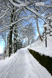 Winter. In norway Stock Images
