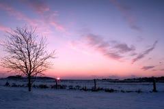 Winter. Landscape Royalty Free Stock Image