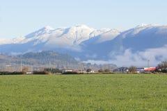 Winter-Ackerland lizenzfreies stockfoto