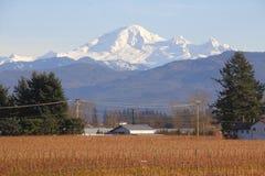Winter-Ackerland und Berg-Bäcker Washington Lizenzfreies Stockbild