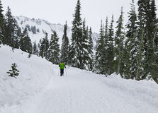Winter Activities. Mt Rainier NP, WA USA - January, 3d 2016. Royalty Free Stock Images