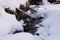 Winter adventures. Creek in the snow. Carpathians. Ukraine. stock photo