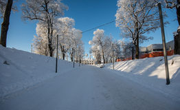 Winter alley, freezing cold royalty free stock photos