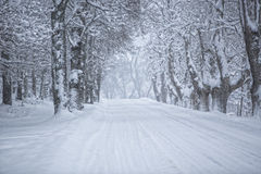 Winter Alley Stock Image