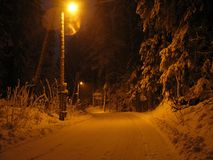 Winter alley at night. Winter alley in park and shining lanterns. Night shot Stock Photography