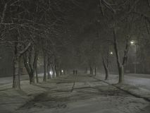 Winter alley in the night. Under snowfall in the city Stock Photography