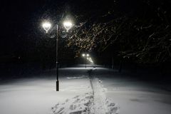 Winter alley in park and shining lanterns. Night shot. Winter alley in park and shining lanterns Stock Photo