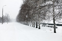 Winter alley with snow falling Stock Images