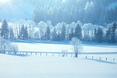 Winter in Alp mountains Royalty Free Stock Images