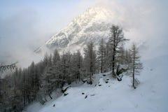 Winter-Alpen lizenzfreies stockbild
