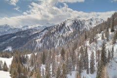Winter alpine landscape Royalty Free Stock Image