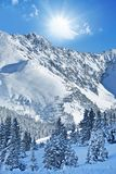 Winter Alpine Landscape Stock Photo