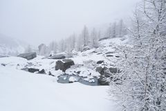 Winter alpine landscape with a mountain stream bubbling over rocks. Snow cover on coniferous forest, snowfall in Swiss Alps stock image