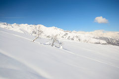 Winter alpine scene Royalty Free Stock Photos