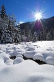 Winter in alpine valley. Winter in Topla valley in northern Slovenia Stock Photography