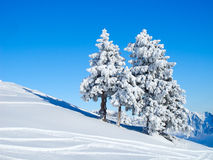 Winter in alps Royalty Free Stock Image