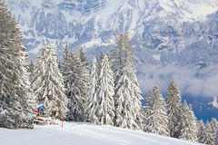 Winter in alps Royalty Free Stock Photography