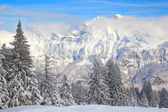 Winter in alps Stock Image