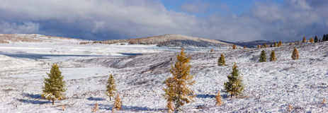 Winter Altai Royalty Free Stock Images