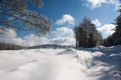 Winter in Anatolia. Beautiful snow in central Anatolia - Turkey Royalty Free Stock Photos
