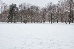 Free Winter And Snow In Berlin Royalty Free Stock Photography - 114740057