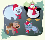 Winter animals Stock Images