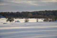 Winter-Ansicht Lizenzfreies Stockbild