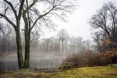 Winter-Ansicht des Parks und der Bank Lizenzfreie Stockfotos