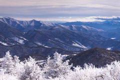 Winter Appalachian Trail Hike 4 Royalty Free Stock Images