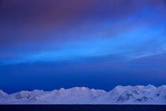 Winter Arctic. White snowy mountain, blue glacier Svalbard, Norway. Ice in ocean. Iceberg twilight in North pole. Pink clouds with Royalty Free Stock Photo