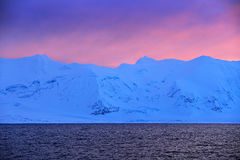 Winter Arctic. White snowy mountain, blue glacier Svalbard, Norway. Ice in ocean. Iceberg twilight in North pole. Pink clouds with Royalty Free Stock Image