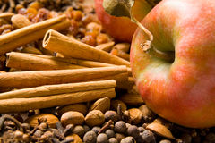 Winter aroma. Apples, cinnamon sticks, cloves, allspice, raisins and almonds make up a diversity of winter aromas royalty free stock photos