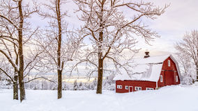 Free Winter Arrives Royalty Free Stock Image - 48032556