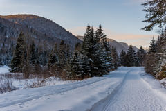 Winter arriving in Jacques Cartier Provincial Park, Quebec. A path along the beautiful snow covered Jacques Cartier Provincial Park in Quebec Royalty Free Stock Photos