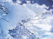 Winter art design. Snow Stock Image