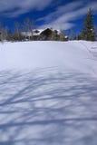 Winter, aspens in snow Stock Photos