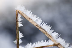 Winter atmosphere. Snow-covered nature in countryside during long winter Stock Photos