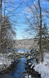 Winter auf Burke Lake lizenzfreies stockbild