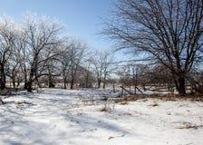 Winter auf dem Bauernhof Stockfotos