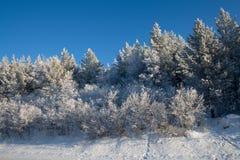 Winter auf dem Durchlauf Lizenzfreies Stockfoto