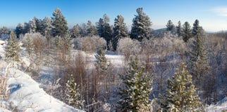 Winter auf dem Durchlauf Lizenzfreie Stockbilder