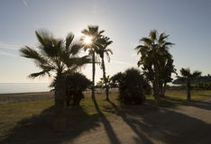 Winter auf dem Strand Costa del Sol Malaga Lizenzfreies Stockfoto