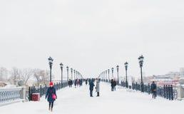 Winter auf der Brücke Stockbild