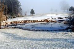 Winter auf einem Golfplatz Lizenzfreie Stockbilder