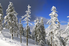 Winter auf Tschechen lizenzfreie stockfotos