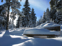 Winter in austria Royalty Free Stock Image