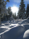 Winter in austria Stock Photos