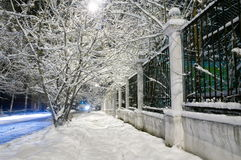 Winter avenue. The Russian Federation. Western Siberia. Novokuznetsk royalty free stock photography