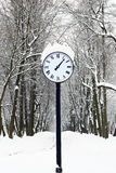 Winter.Avenue of park hours. Royalty Free Stock Photo