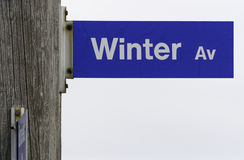 Winter Avenue Sign Royalty Free Stock Image